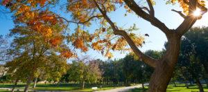 Valencia en otoño, mucho que descubrir